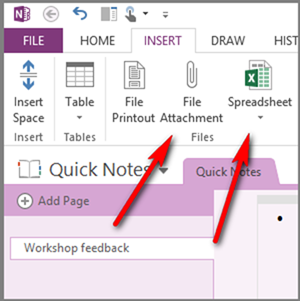 Figure 1: OneNote Desktop with full Inserts.